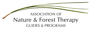 Association-Nature-Forest-Therapy-Guides