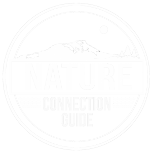 Nature Connection Guide
